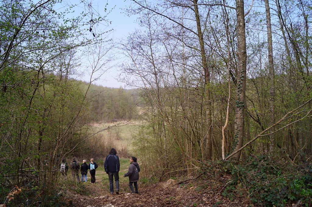 l'ancienne carrière restera un but agréable de promenade, les arbres ne seront pas sacrifiés, ni la faune, ni la flore de ce lieu exceptionnel.